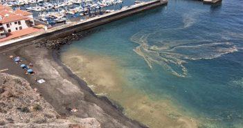 Ashotel решила внести свою лепту в неразбериху с микроводорослями у побережья Канар