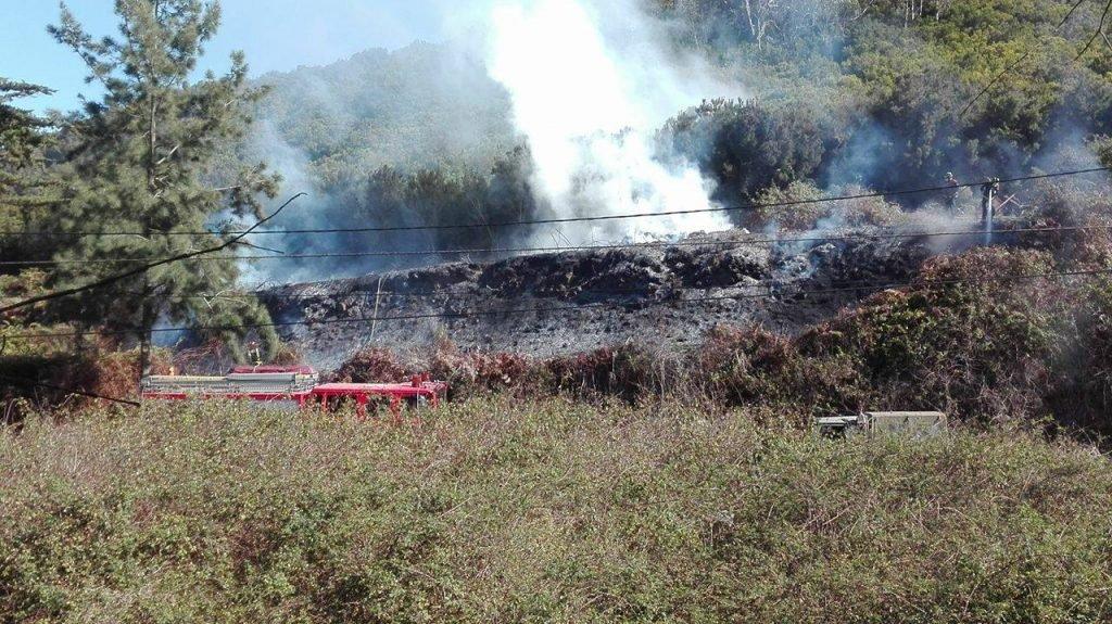 Пожарные работают, чтобы подавить начавшийся пожар по дороге в La Esperanza, на севере Тенерифе