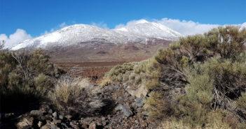 Похоже, на этот раз синоптики не дали маху: и снег, и дождь, и шторм и даже град на Тенерифе