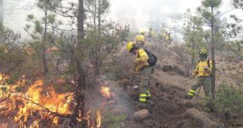 Власти Тенерифе объявили, что пожар в горах острова уже стабилизирован