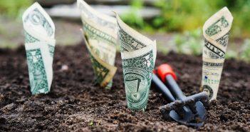 Мошенник гарантировал 100% доходности в течение месяца с инвестиций