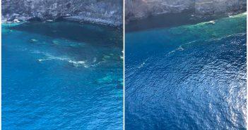 Вертолеты GES не нашли значительных скоплений микроводорослей вблизи пляжей архипелага