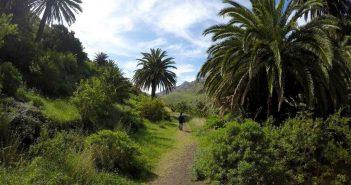 Тенерифе будет иметь 24 новые бесплатные точки Wi-Fi для охвата самых посещаемых районов острова