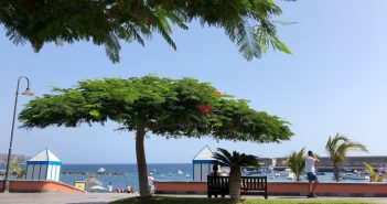Туризм на Канарских островах испытывает трудности