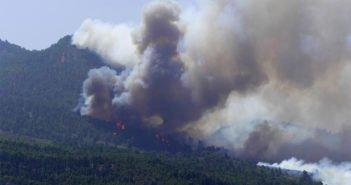 Канары серьёзно подготовились к сезону лесных пожаров