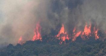 Пожары в Испании: правительство уже отправило на борьбу с ними более тридцати воздушных судов