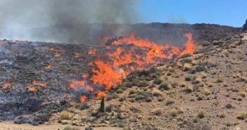 Пожары на Тейде: Гражданская гвардия подозревает поджоги