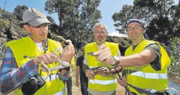 Тенерифе грозят нашествием змей с соседнего острова