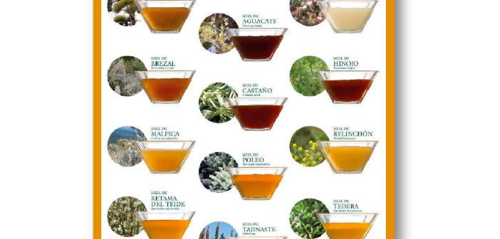 Засуха вызывает большие потери производства мёда на Тенерифе