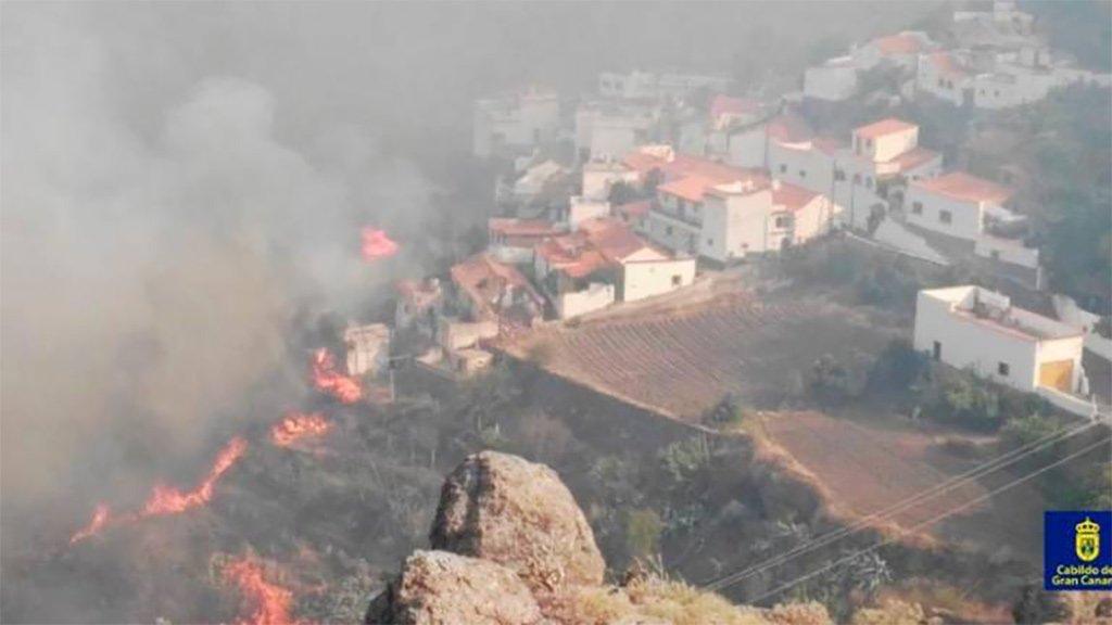 Огонь уже добрался до природного парка Tamadaba