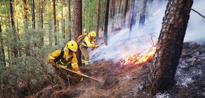 Кабильдо Гран Канария оценивает последствия пожара для населения