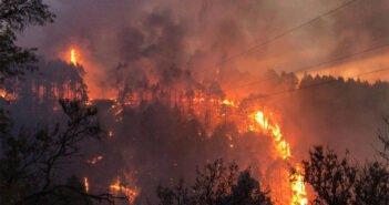 Пожар на острове Ла Пальма пытаются удержать, пока не получается