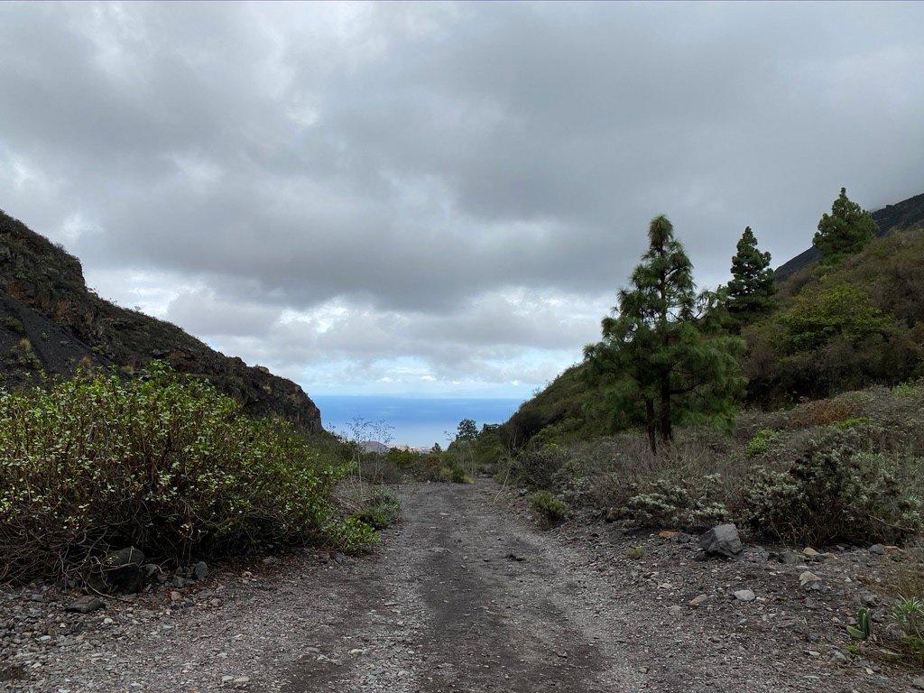 Тенерифе: жёлтое предупреждение из-за сильных ветров