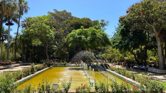 Santa Cruz de Tenerife открыл для посещения парки и спортзалы