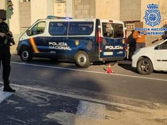 Santa Cruz de Tenerife: воры утащили из дома даже домашних животных