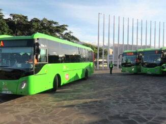"""Канары: после прекращения действия """"estado de alarma"""" в автобусы вернётся оплата наличными"""